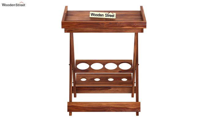 Delroy Bar Cabinet (Teak Finish)-4