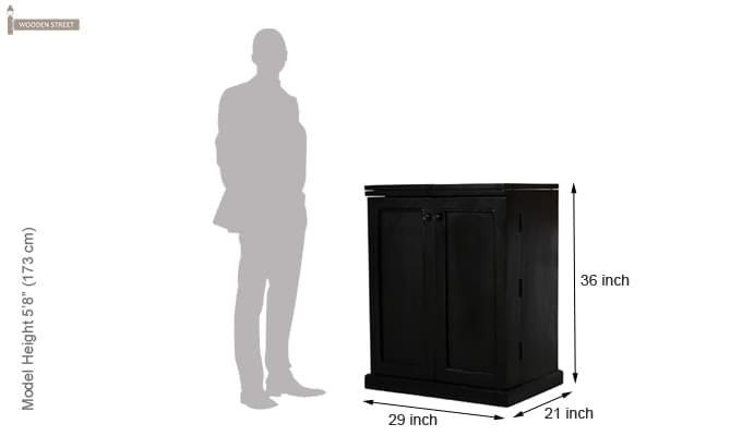 Norris Bar Cabinet (Black Finish)-6