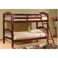Darla Bunk Bed (Honey Finish)
