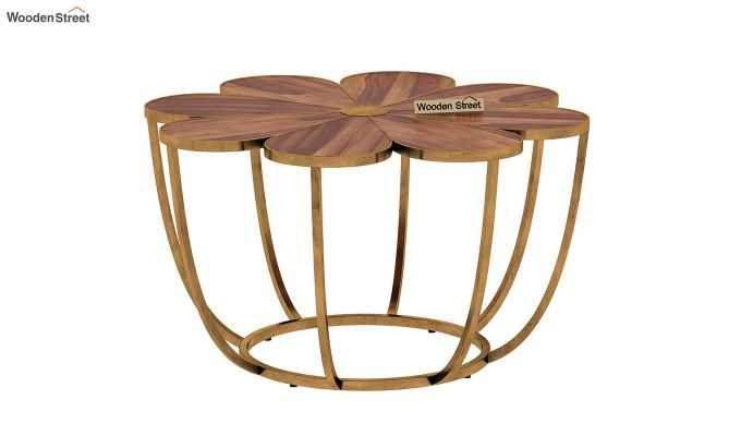 Flora Coffee Table (Teak Finish)-3