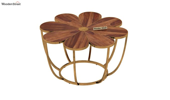 Flora Coffee Table (Teak Finish)-5