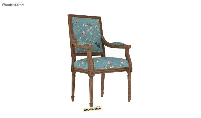 Shell Arm Chair (Bubble Robins)-2