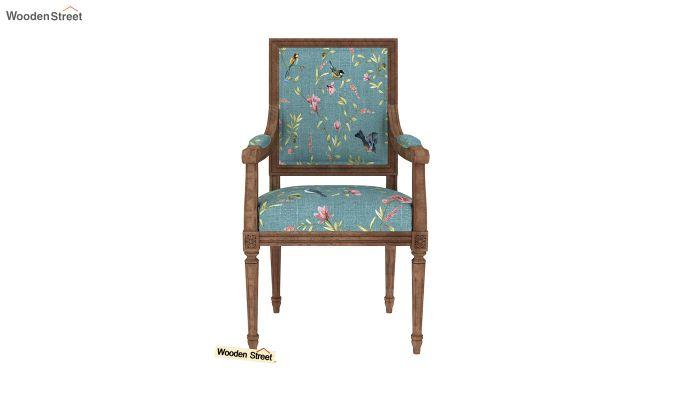 Shell Arm Chair (Bubble Robins)-3