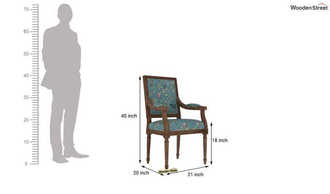 Shell Arm Chair (Bubble Robins)-4
