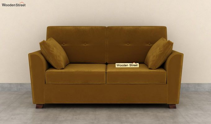 Archerd 2 Seater Sofa (Velvet, Chestnut Brown)-3