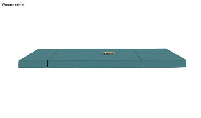 Coleman Futon Bed (Two Seater, Aqua Marine)-10