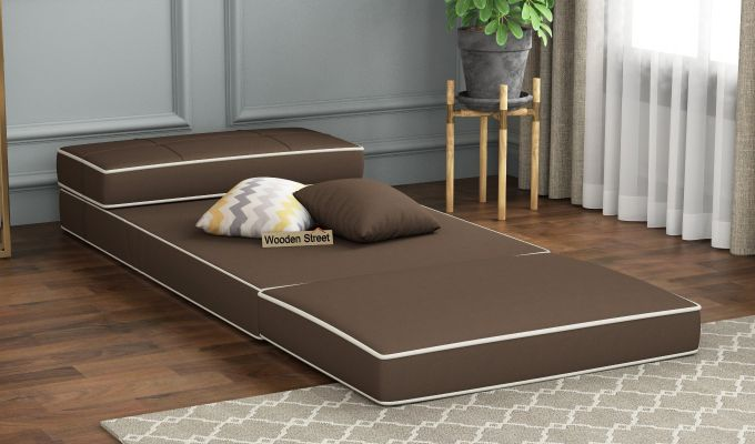 Winsley Fabric Sofa Cum Bed (Classic Brown)-2