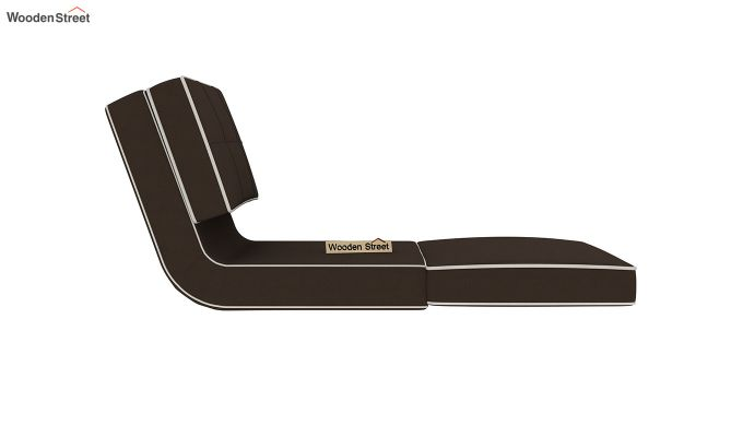 Winsley Fabric Sofa Cum Bed (Classic Brown)-5