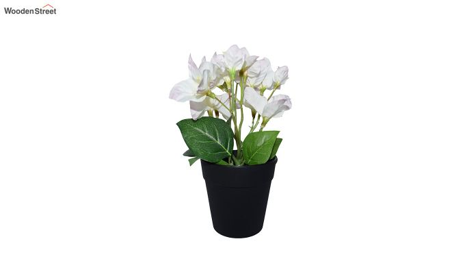 Artificial Bougainvillea Flowers In Plastic Pot-3