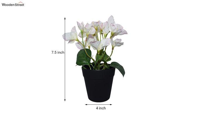 Artificial Bougainvillea Flowers In Plastic Pot-4