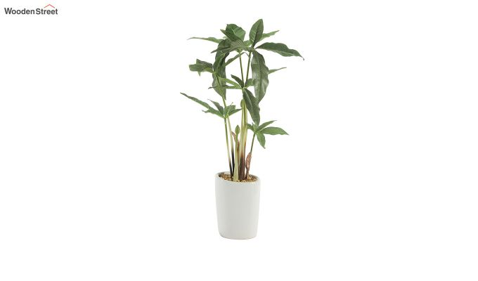 Artificial Cyperus Bonsai Plant-2