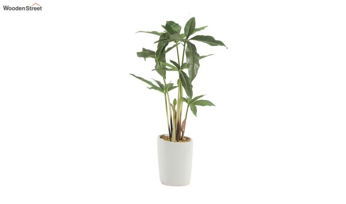 Artificial Cyperus Bonsai Plant-3