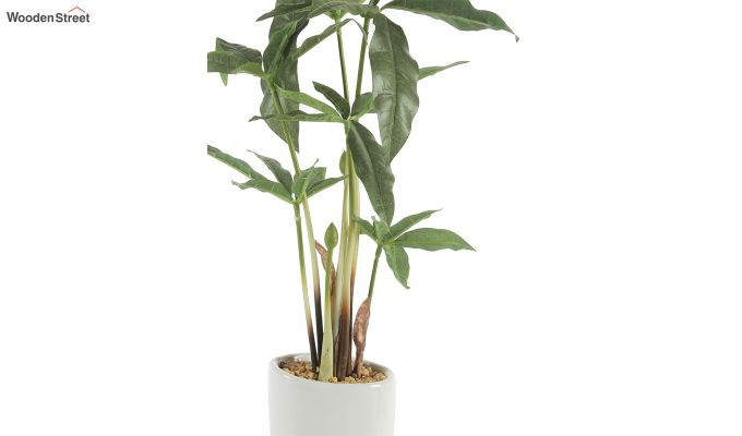 Artificial Cyperus Bonsai Plant-4