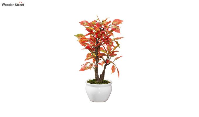 Artificial Ficus Red Bonsai Plant With Pot-2