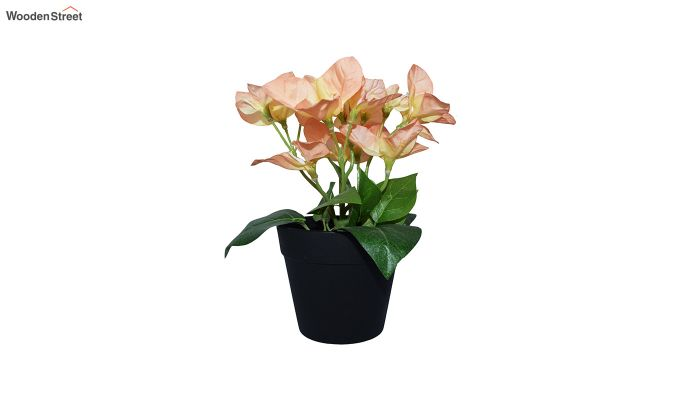 Artificial Peach Bougainvillea Flowers in Plastic Pot-2