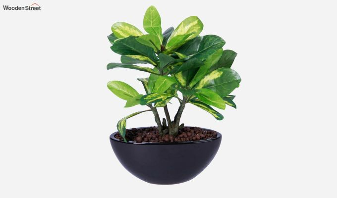 Artificial Bonsai Plant With Pot-2