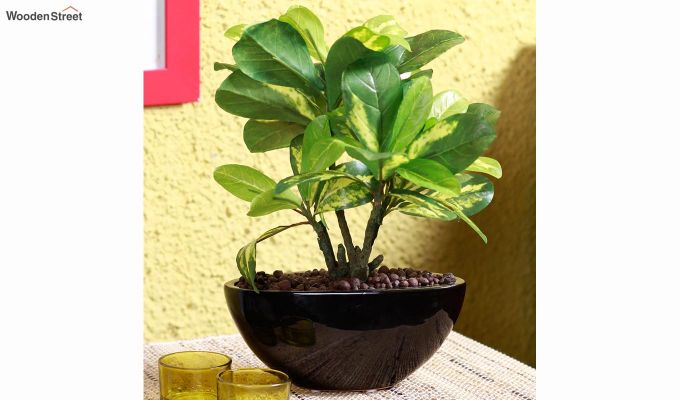Artificial Bonsai Plant With Pot-1