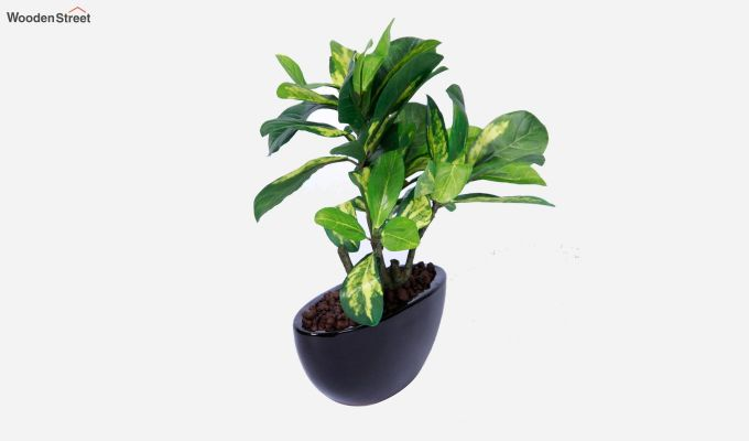 Artificial Bonsai Plant With Pot-3