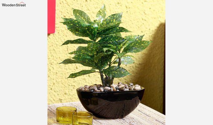 Artificial Green Croton Bonsai Plant With Ceramic Pot-1