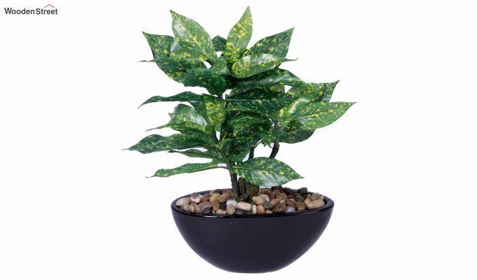 Artificial Green Croton Bonsai Plant With Ceramic Pot-3