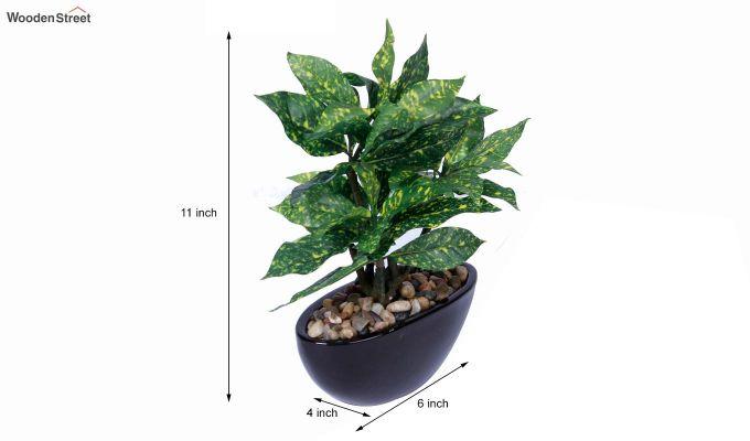 Artificial Green Croton Bonsai Plant With Ceramic Pot-4