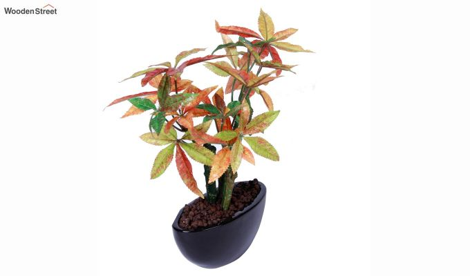 Artificial Japanese Maple Plant With Ceramic Pot-2