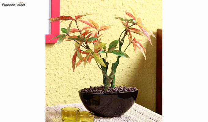 Artificial Japanese Maple Plant With Ceramic Pot-1