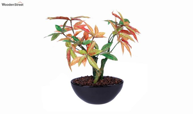 Artificial Japanese Maple Plant With Ceramic Pot-3