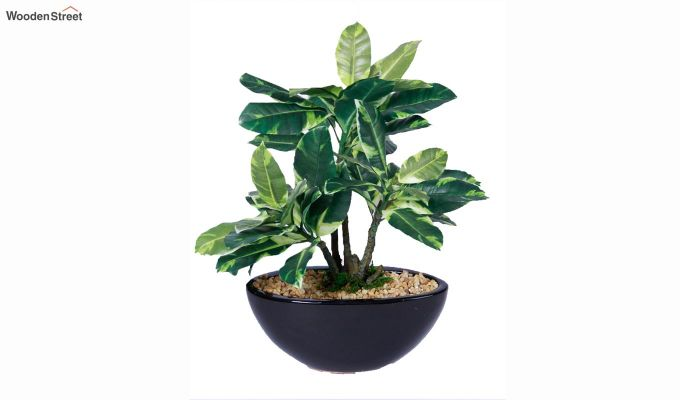 Artificial Polyurethane and Plastic Plant With Pot-3