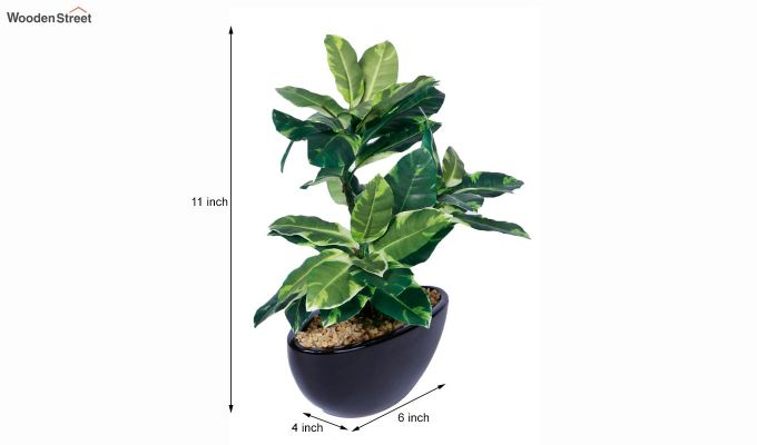 Artificial Polyurethane and Plastic Plant With Pot-4
