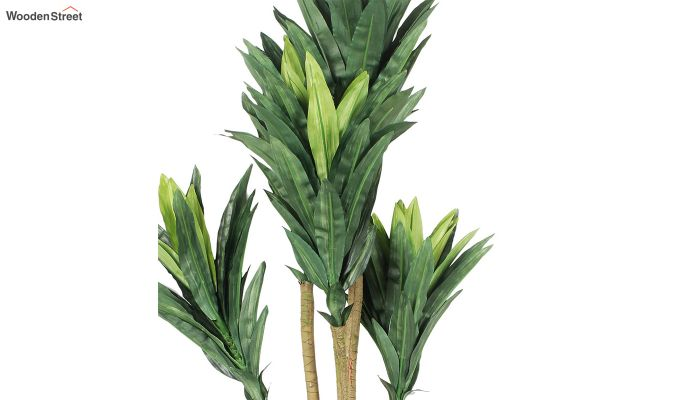 Green Polyester Dracaena Artificial Plant-3