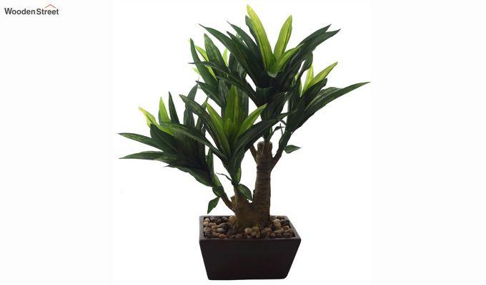 Green Polyester Dracaena Bonsai In Ceramic Pot-2