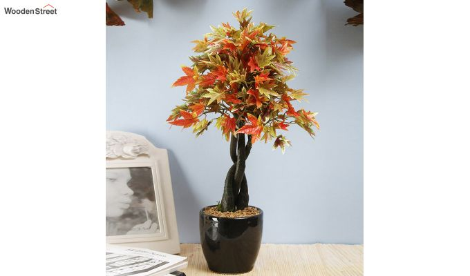 Multicolor Polyester Artificial Japanese Maple Plant with Pot-1