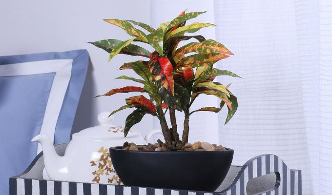 Red Polyester Croton Bonsai with Ceramic Pot-1