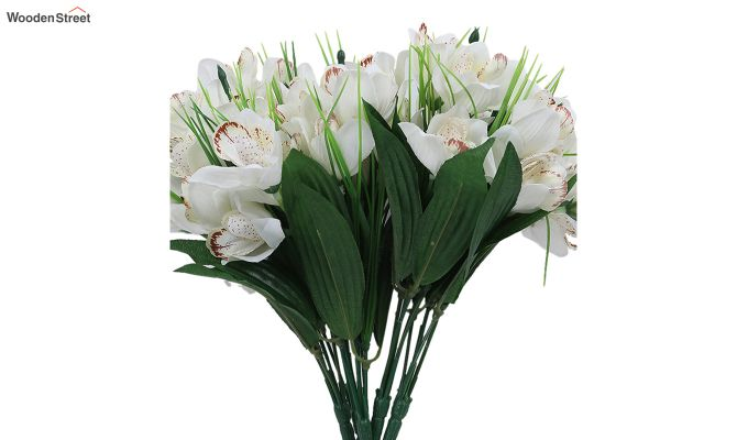 White Canna Flower Bunch With Pot (Set Of 5)-4