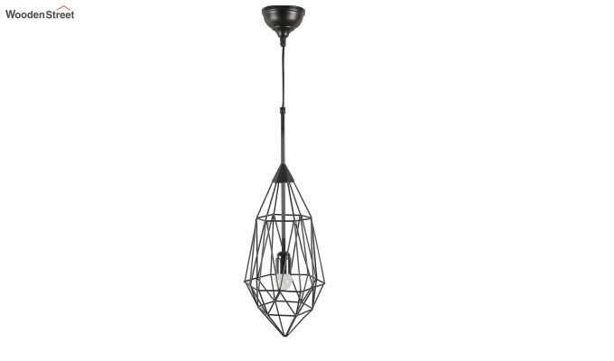Black Birdcage Hanging Light by Grated Ginger-5