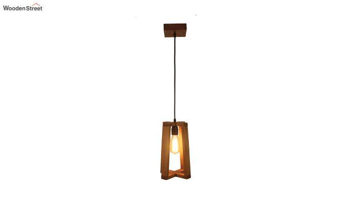 Blender Brown Wooden Hanging Lamp-4