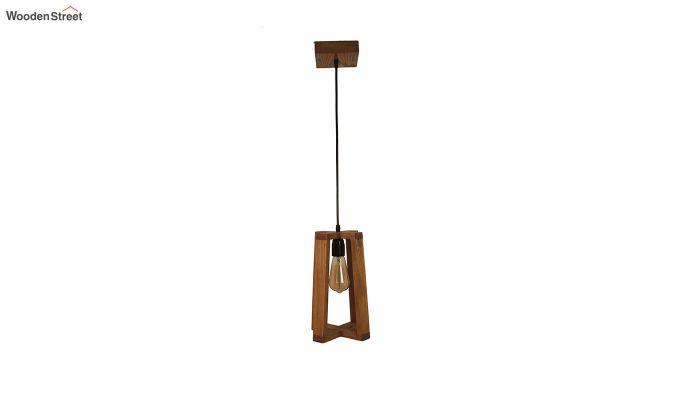 Blender Brown Wooden Hanging Lamp-5
