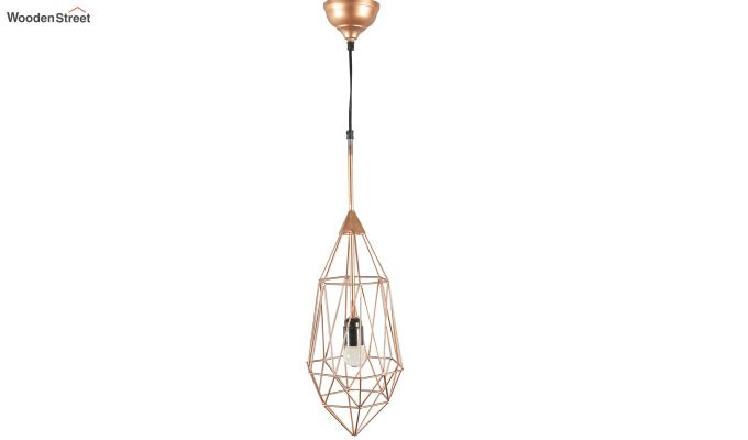 Copper Birdcage Hanging Light by Grated Ginger-5