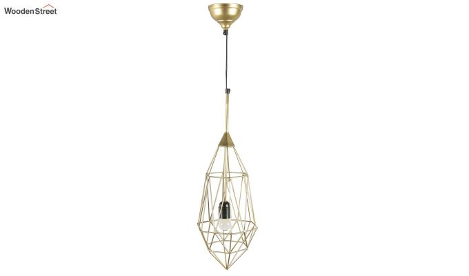 Gold Birdcage Hanging Light by Grated Ginger-5
