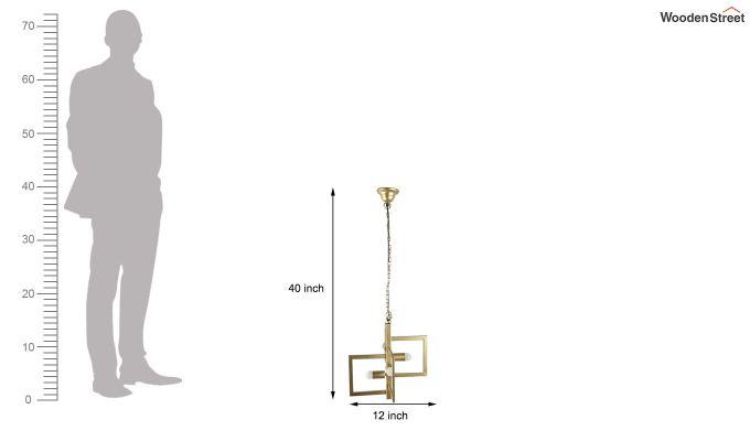 Gold Vane Hanging Light by Grated Ginger-5