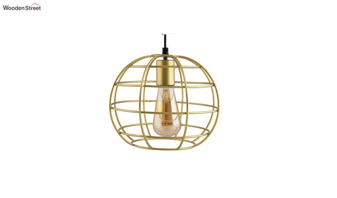 Golden Classic Sphere Filament Hanging Light-3