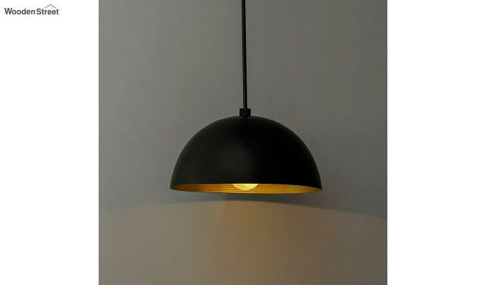 Lillian Black Mettalic Hanging Light-1