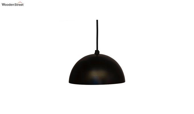 Lillian Black Mettalic Hanging Light-2
