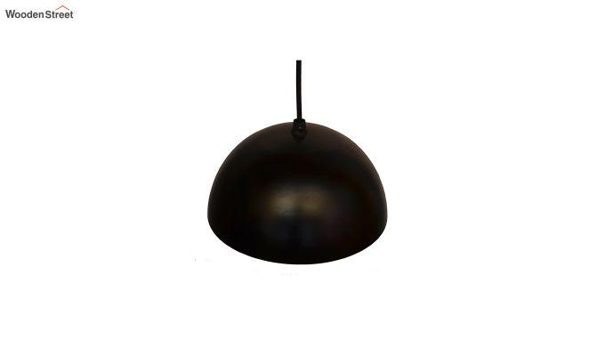 Lillian Black Mettalic Hanging Light-3