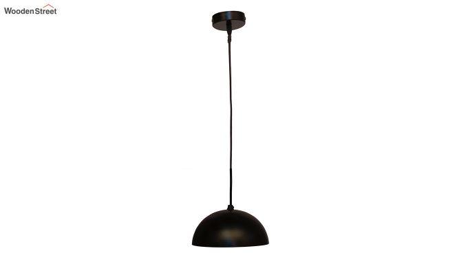 Lillian Black Mettalic Hanging Light-4