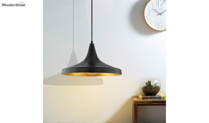 Nordic Modern Black Danish Shape Hanging Light-1
