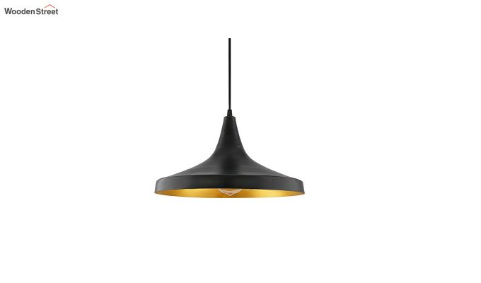 Nordic Modern Black Danish Shape Hanging Light-2
