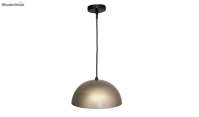 Silver Mettalic 10-inch Hanging Light-4