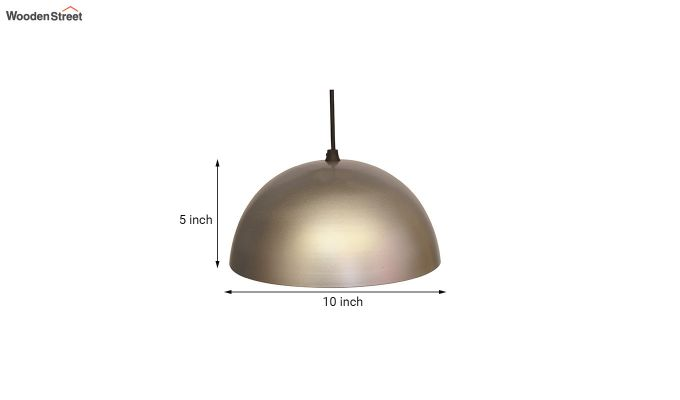 Silver Mettalic 10-inch Hanging Light-5